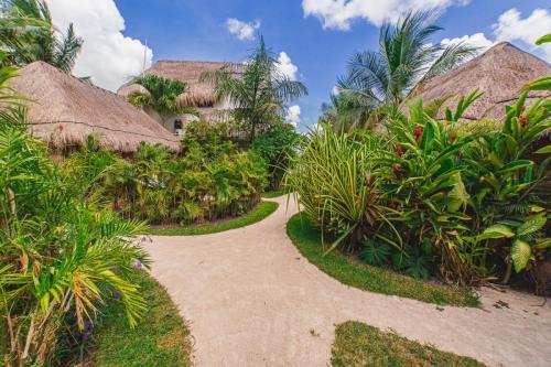 31 Casa Bakal